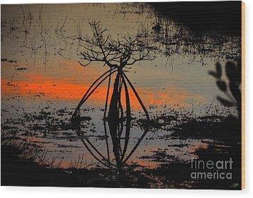 Mangrove Silhouette Wood Print by David Lee Thompson