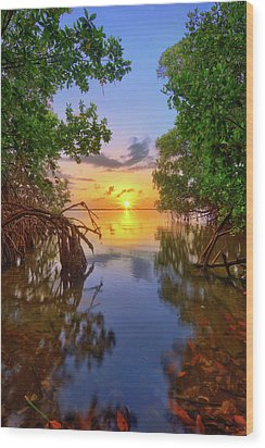 Mangrove Sunset From Jensen Beach Florida Wood Print by Justin Kelefas