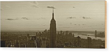 Manhattan Sky View Wood Print by Terry Cork