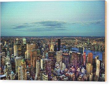 Manhattan's Upper East Side Wood Print by Randy Aveille