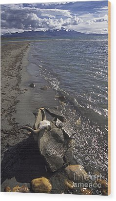Mani Stone At Lake Manasarovar - Tibet Wood Print by Craig Lovell