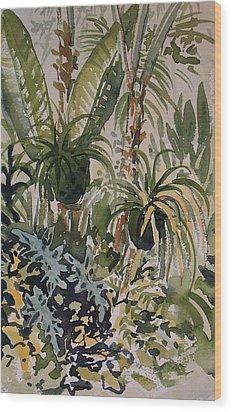 Manito Greenhouse Wood Print