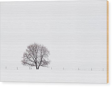 Manitoba Winter Wood Print