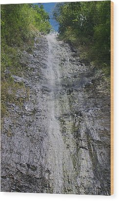 Manoa Falls Wood Print