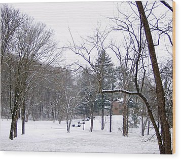 Wood Print featuring the photograph Mansion In The Snow by Skyler Tipton