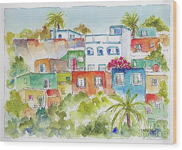 Wood Print featuring the painting Manzanillo Hillside by Pat Katz