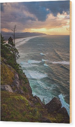 Wood Print featuring the photograph Manzanita Sun by Darren White