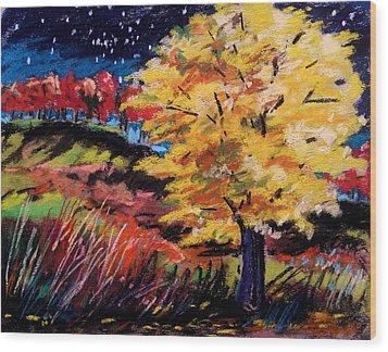 Maple At Night Wood Print by John Williams