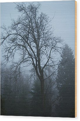 Maple In Fog Wood Print by Ken Day