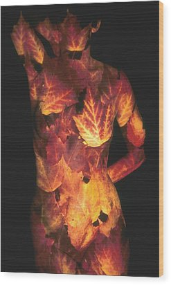Maple Leaves Wood Print by Arla Patch