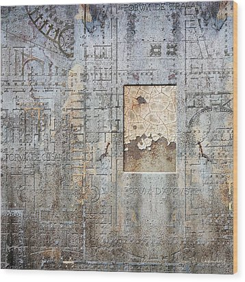 Maps #18 Wood Print by Joan Ladendorf