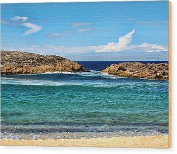 Mar Chiquita North Coast Puerto Rico Wood Print by Frank Feliciano