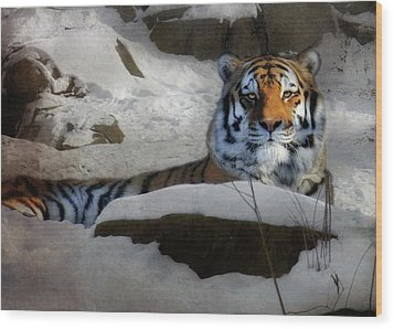 Mara Wood Print by Lori Deiter