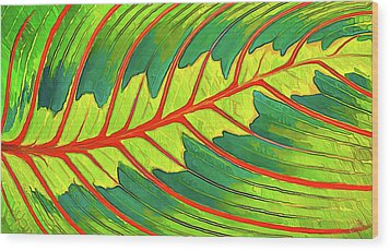Wood Print featuring the digital art Maranta Red 2 by ABeautifulSky Photography
