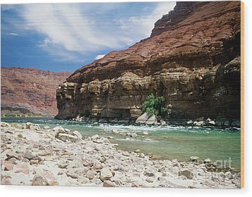 Marble Canyon Wood Print by Kathy McClure