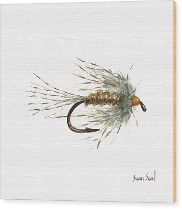 March Brown Spider Wood Print by Sean Seal