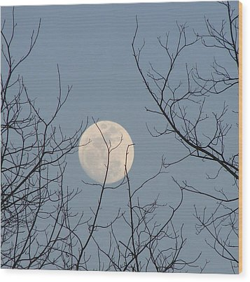 March Moon Wood Print