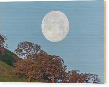 Wood Print featuring the photograph March Moonset by Marc Crumpler