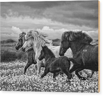 March Of The Mares Wood Print by Joan Davis