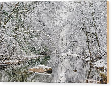 Wood Print featuring the photograph March Snow Along Cranberry River by Thomas R Fletcher