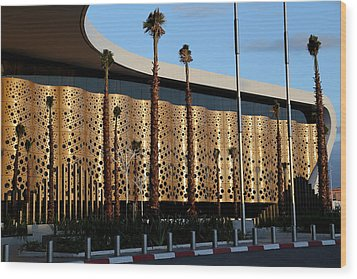 Wood Print featuring the photograph Marrakech Airport 1 by Andrew Fare