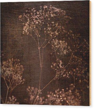 Marroncito Wood Print