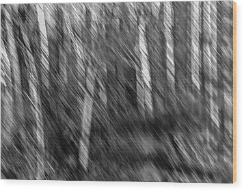 Marsh Abstract Wood Print by Thomas Young