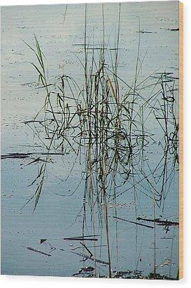 Marsh Grass Wood Print by Donna Thomas