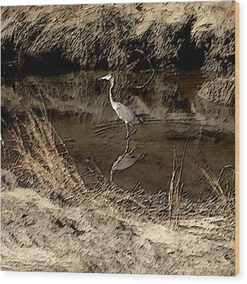 Marsh Bird Wood Print