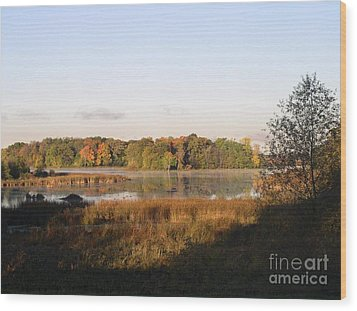 Marsh Morning Wood Print by Mendy Pedersen