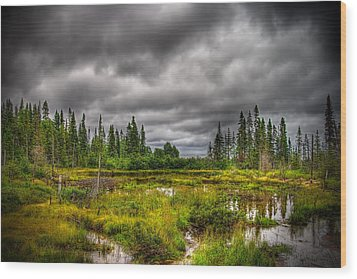 Marsh Near The Lake Wood Print by Michel Filion