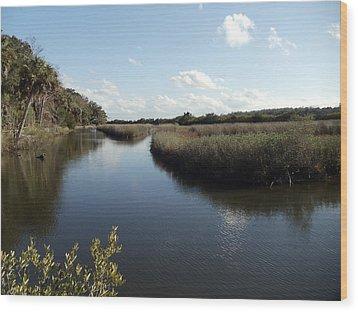 Marsh Reflection Wood Print by Cheryl Waugh Whitney
