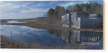 Marsh Reflection Wood Print by David Bishop