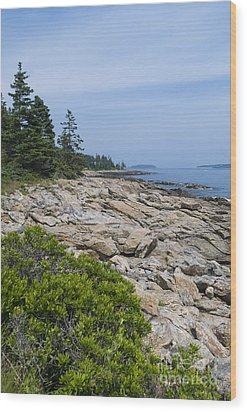 Marshall Ledge Looking Downeast Wood Print