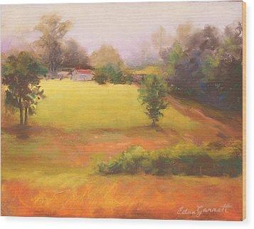 Marshallville Landscape 1 Wood Print