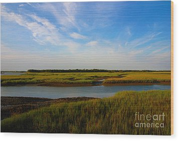Marshland Charleston South Carolina Wood Print