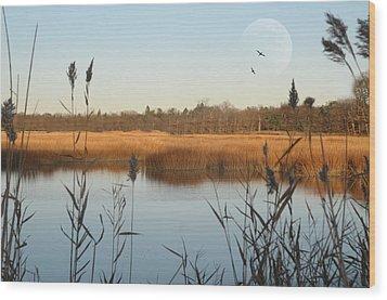 Marshland Wood Print by Diana Lee Angstadt