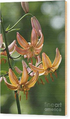 Martagon Lily Wood Print