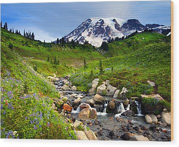 Martha Creek Wildflowers Wood Print by Mike  Dawson