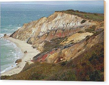 Marthas Vinyard Ocean Cliff Wood Print