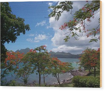 Wood Print featuring the photograph Martinique by Mary-Lee Sanders