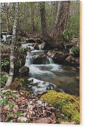 Wood Print featuring the photograph Massanutten Spring 2 by Lara Ellis