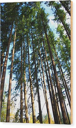 Mast Wood Print by Sergey and Svetlana Nassyrov