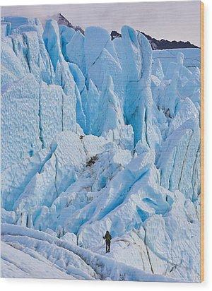 Matanuska Glacier Alaska Hiking Wood Print by Sam Amato