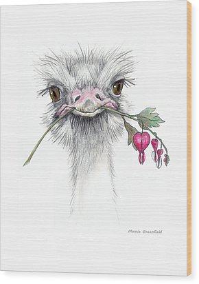 Matilda The Ostrich Wood Print