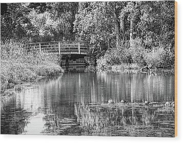 Matthaei Botanical Gardens Black And White Wood Print