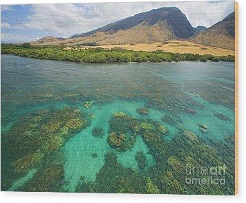 Maui Landscape Wood Print by Ron Dahlquist - Printscapes