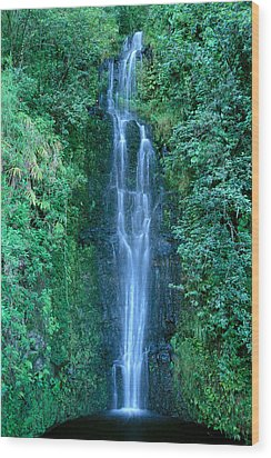 Maui Waterfall Wood Print by Bill Brennan - Printscapes