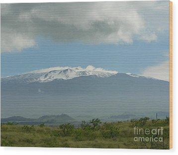 Mauna Kea Wood Print by Don Lindemann