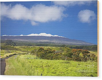 Mauna Kea Wood Print by Peter French - Printscapes